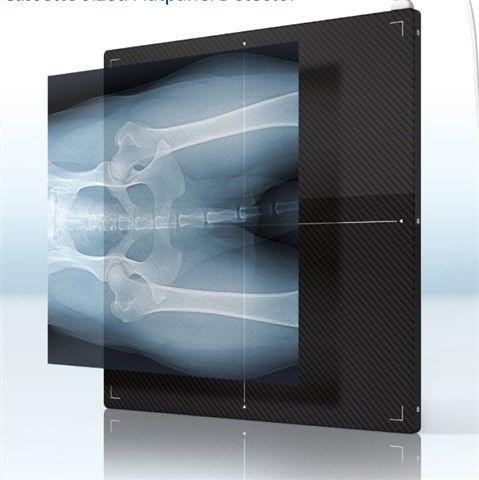 Allpro Imaging - Scan X DR Flatpanel