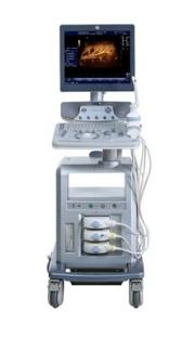 GE Healthcare - Voluson P6